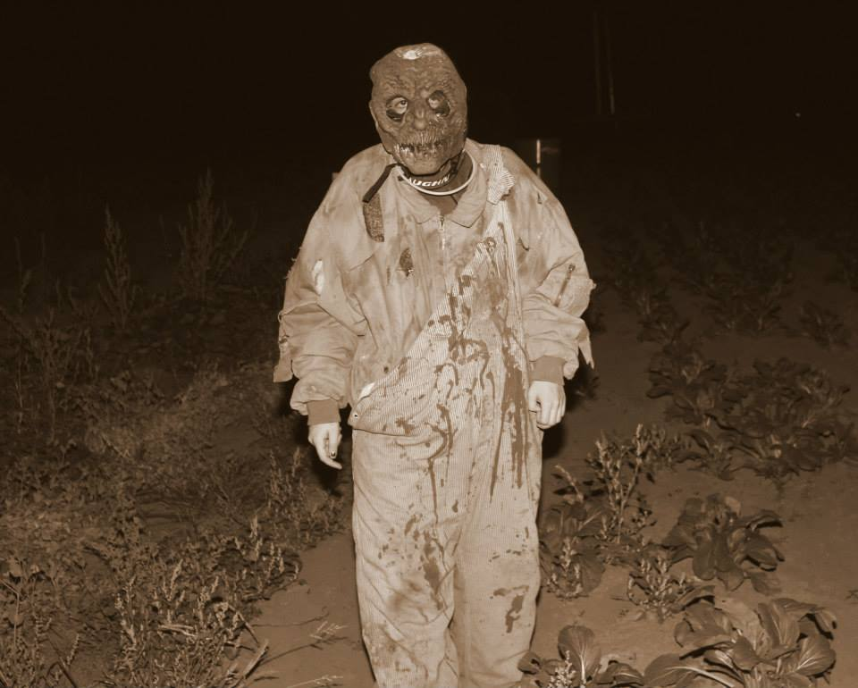 corn maze and zombie hunter paintball the haunting experience